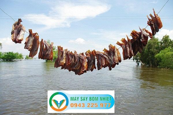 Phương pháp phơi khô truyền thống -Máy sấy cá khô