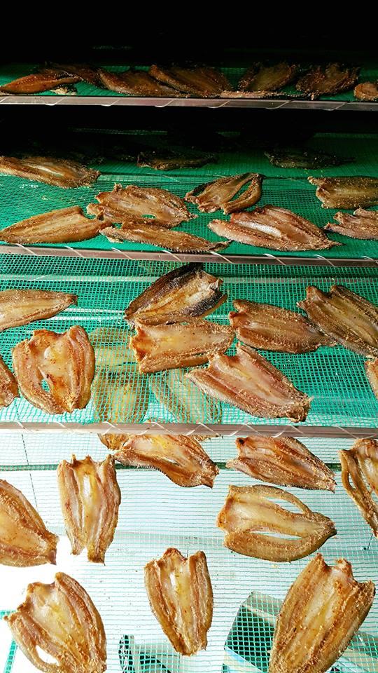 Làm khô cá lóc kinh doanh bằng máy sấy hải sản-Khách Hàng