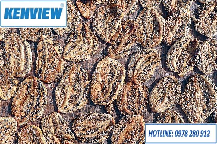 Máy sấy nông sản kenview-chuối sấy khô làm dược liệu-0978.280.912