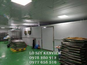 Lò sấy hải sản Kenview Ms1000