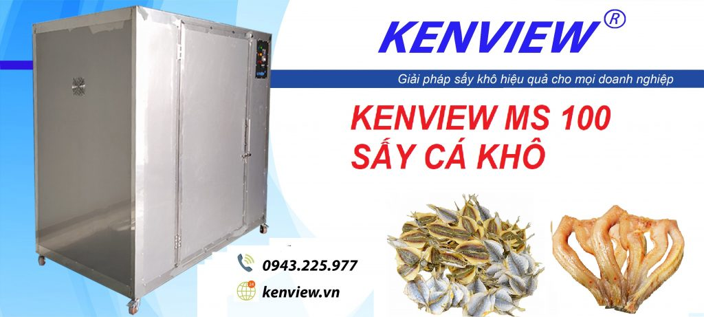 kenview ms 100