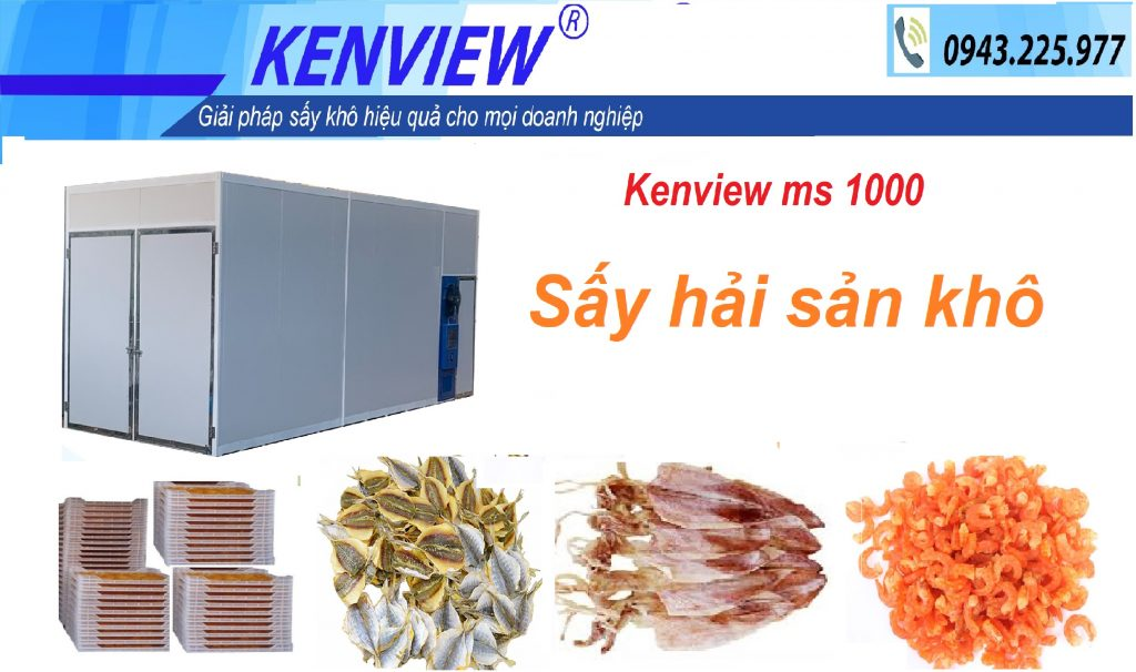kenview ms 1000