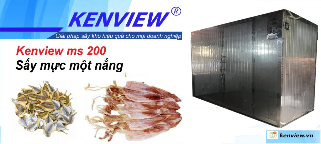 kenview ms 200