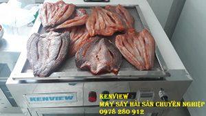 Mẫu cá khô Khách đến sấy mẫu tại Kenview