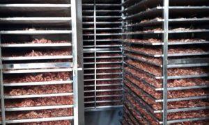 Quy trình sấy tôm khô bằng máy sấy hải sản